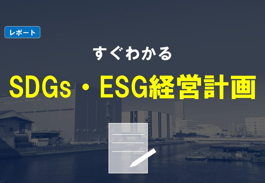 【無料DLレポート】すぐわかるSDGs・ESG経営計画の本