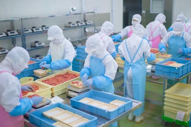 【建設業の経営者向け】「製造業」統計や企業ヒアリングからみた食品工場の市場性